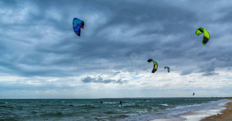 Kania surfingowowie przy Chelsea plażą zdjęcie royalty free