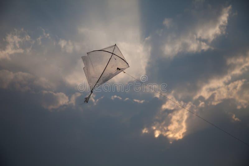 Kania w niebie zdjęcia royalty free