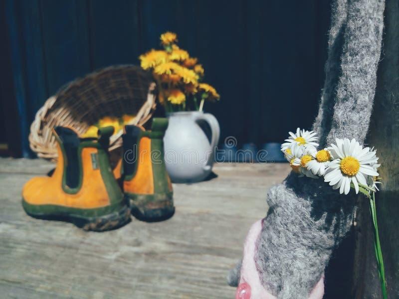 Kanin leker med blommakransen på huvudet royaltyfri bild