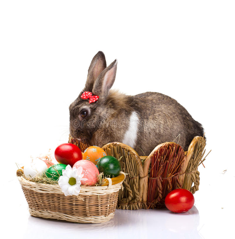 Kanin med pilbågen och easter ägg arkivbilder