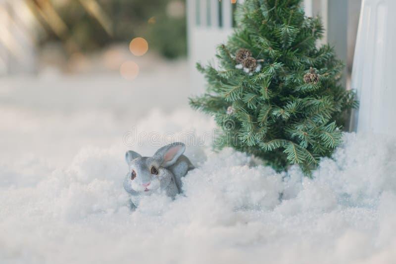 Kanin under trädet i snön royaltyfria bilder