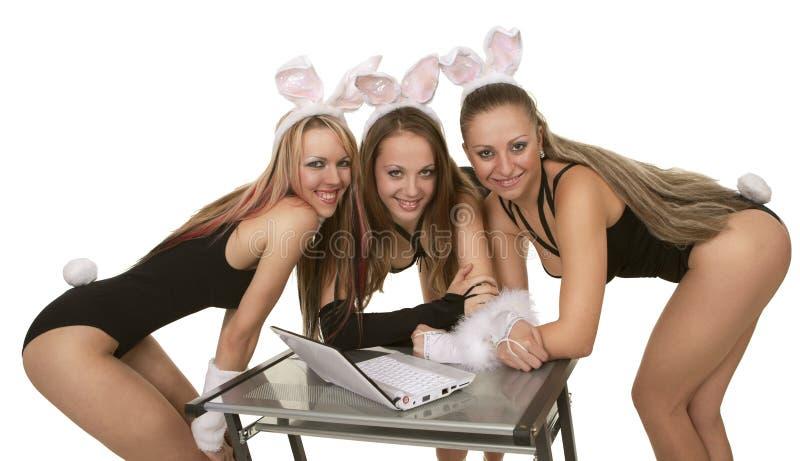 kaninbärbar datorplaygirls fotografering för bildbyråer