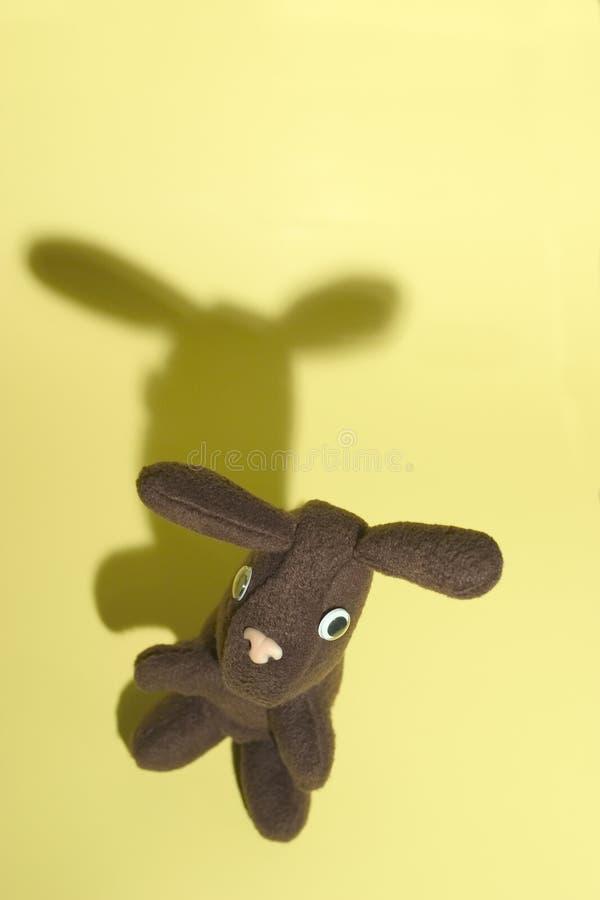 Kaninchen auf Gelb 1 stockfoto