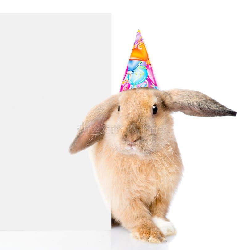 Kaninchen im Geburtstagshut späht heraus von hinten eine leere Fahne Getrennt lizenzfreie stockbilder