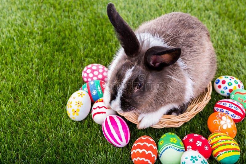 Kaninchen und Ostereier stockfotos