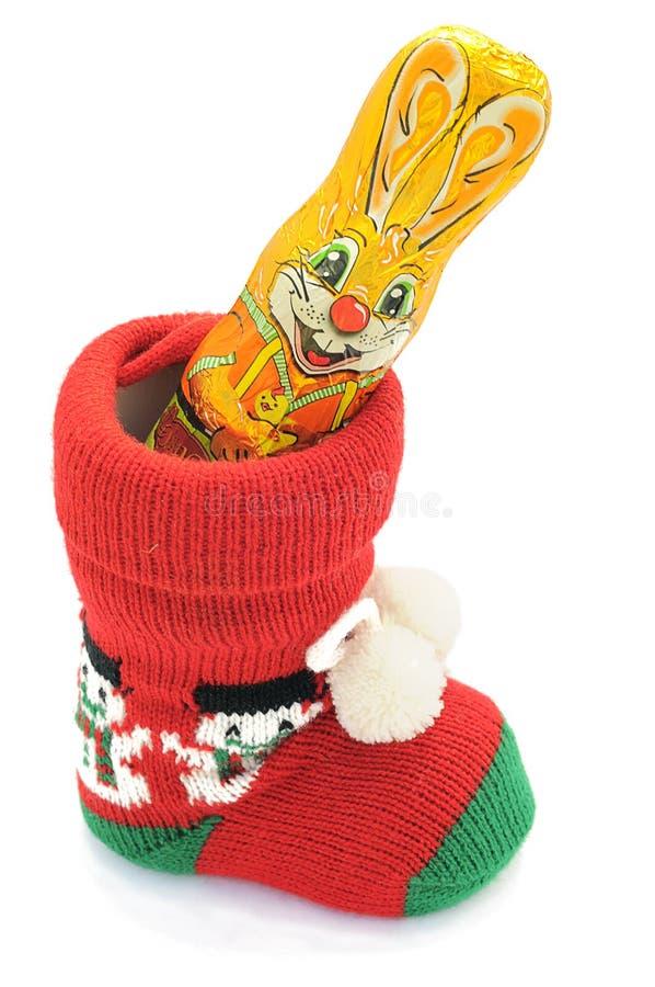 kaninchokladeaster kanin royaltyfri foto
