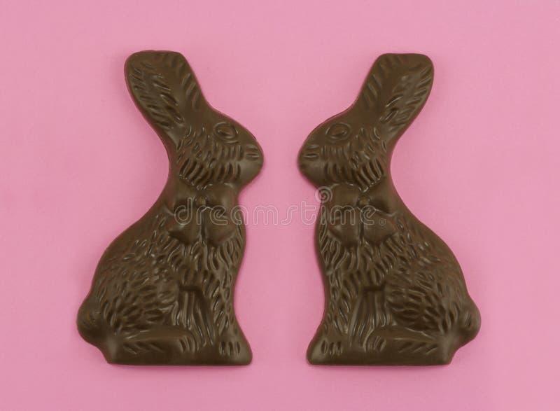 kaninchokladförälskelse arkivbilder