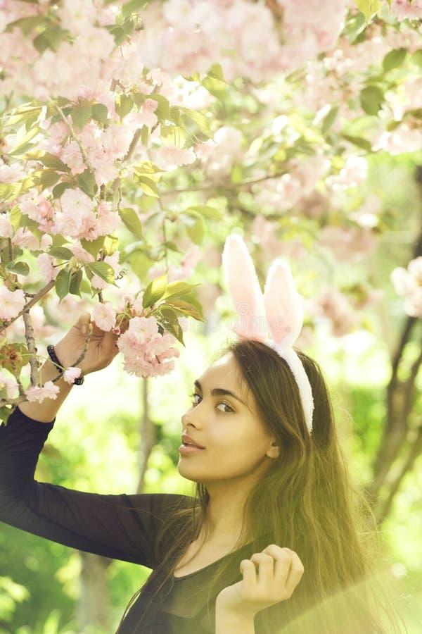 Kaninen gå i ax på kvinna med vårsakura blommor arkivbilder