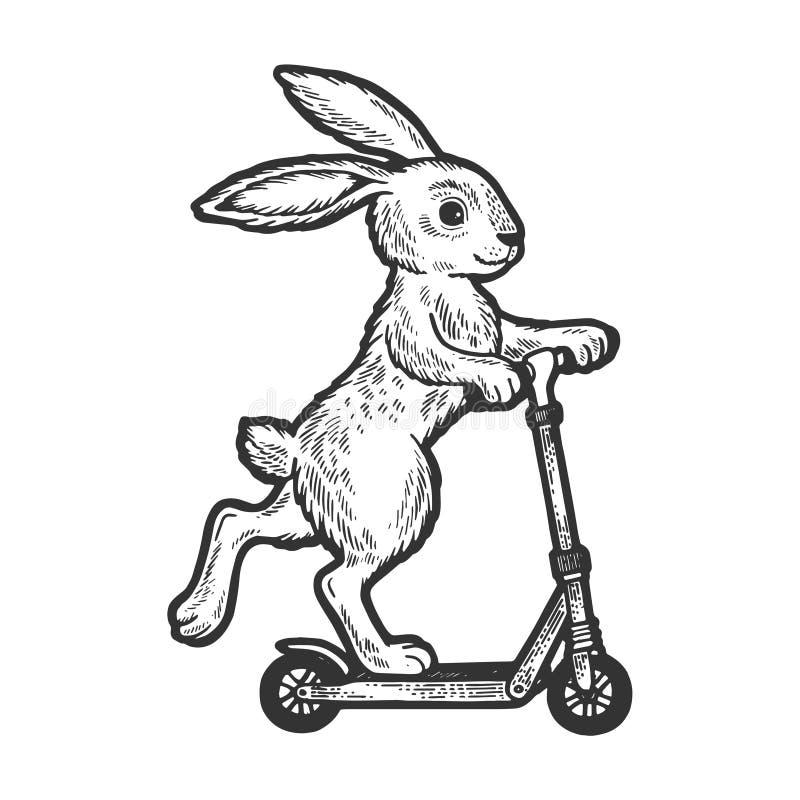 Kaninridningen på sparkcykeln skissar gravyrvektorn vektor illustrationer