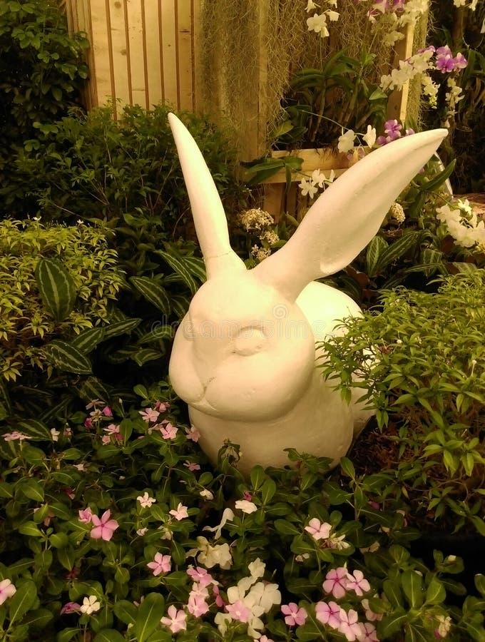 Kaninstaty i busken arkivbild