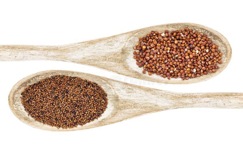 Kaniwa en quinoa korrel royalty-vrije stock afbeeldingen