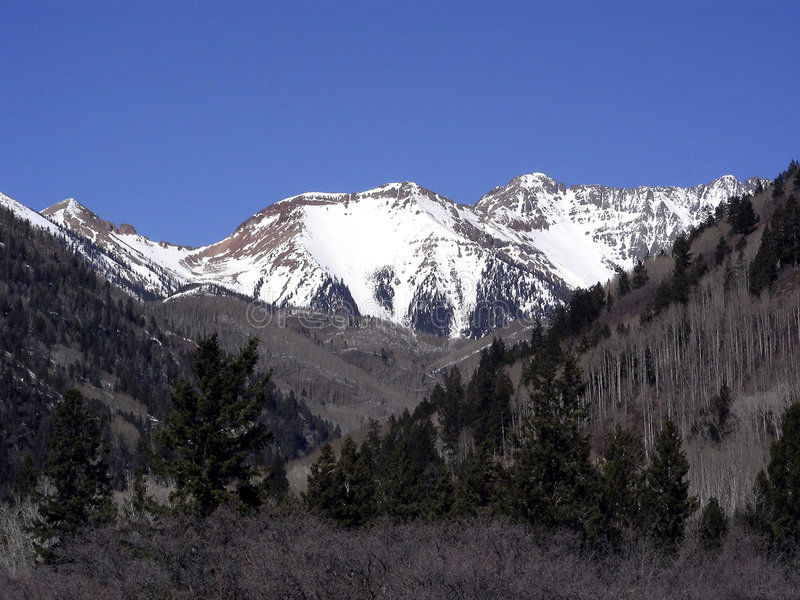 Download Kanjon colorado arkivfoto. Bild av green, kanjon, snow - 505126