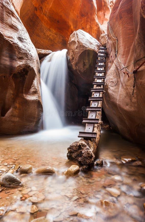 Kanjon för Kanarra liten vikspringa i den Zion nationalparken, Utah royaltyfri fotografi