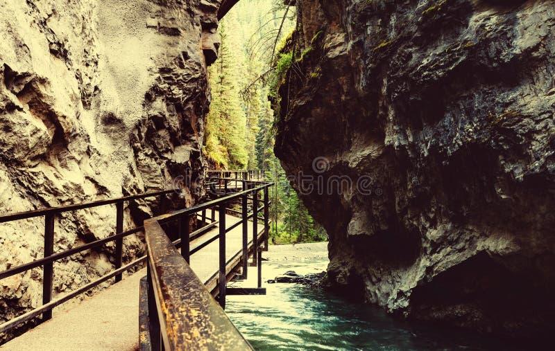 Kanjon i Banff NP arkivbilder