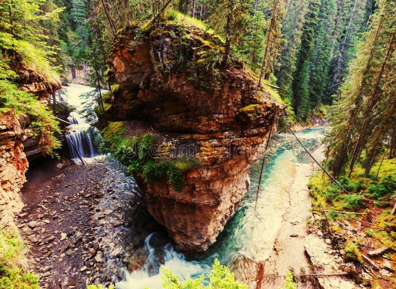 Kanjon i Banff NP arkivfoto