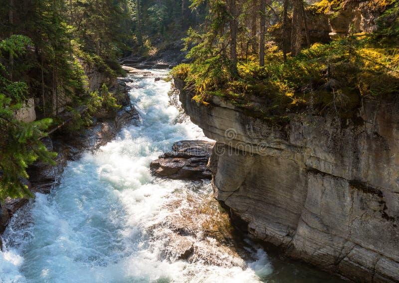 Kanjon i Banff NP arkivfoton