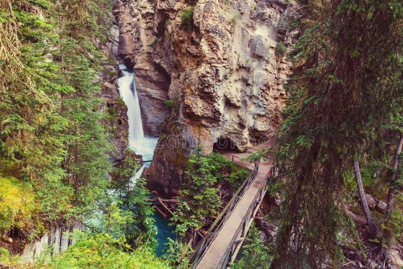 Kanjon i Banff NP royaltyfria foton