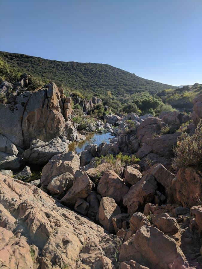 Kanjon med floden royaltyfri foto