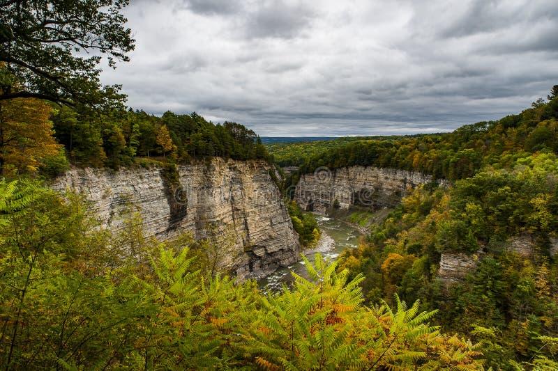 Kanjonsikter på den molniga eftermiddagen - den Letchworth delstatsparken - New York arkivbilder