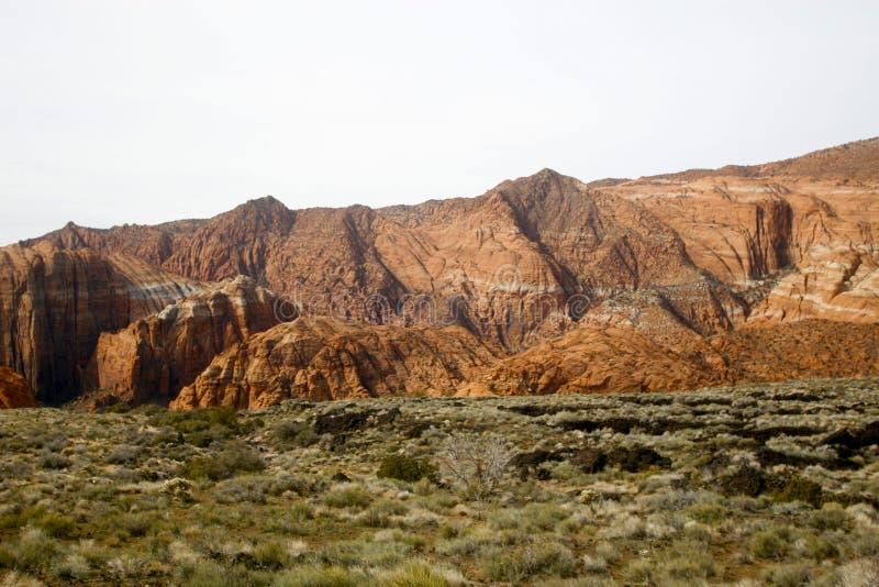 Kanjonsnow Utah Arkivfoton