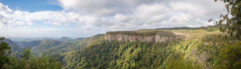 Kanjonutkik, Springbrook nationalpark, Queensland, Australien royaltyfri foto