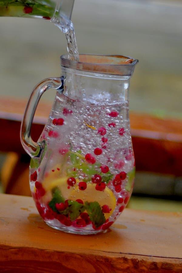 Kanna av vatten och frukt royaltyfri foto