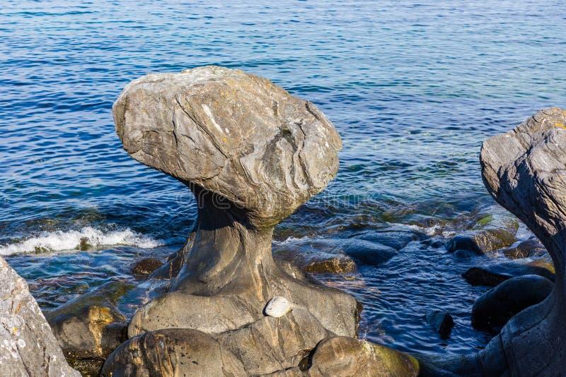 Kannesteinen is een speciale gevormde steen royalty-vrije stock afbeeldingen