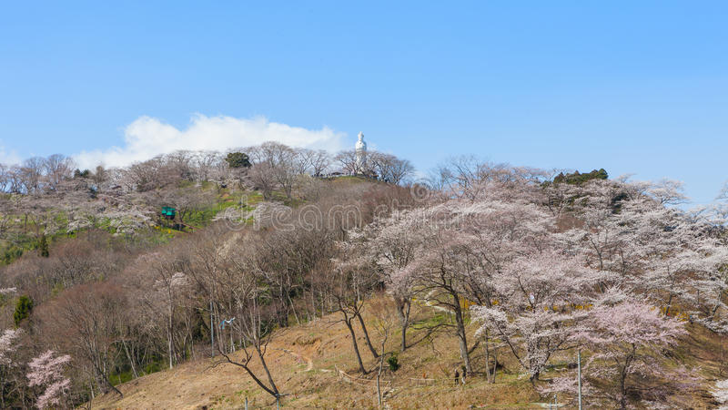 The Kannon statue and Funaoka castle ruin park, Miyagi, Japan. The Kannon statue and full bloom cherry blossoms (Sakura) at Funaoka castle ruin park in Miyagi stock photo