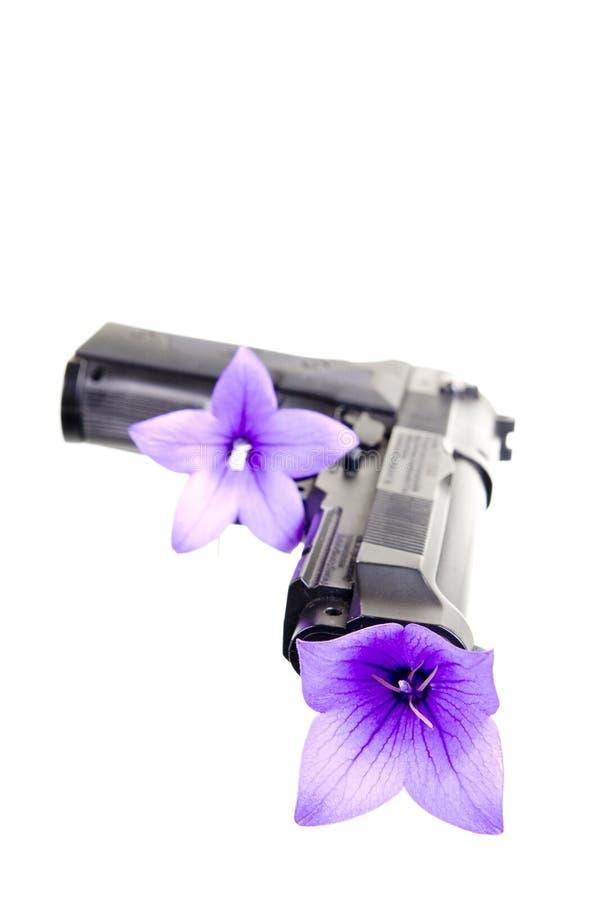 Kanon en bloem stock fotografie