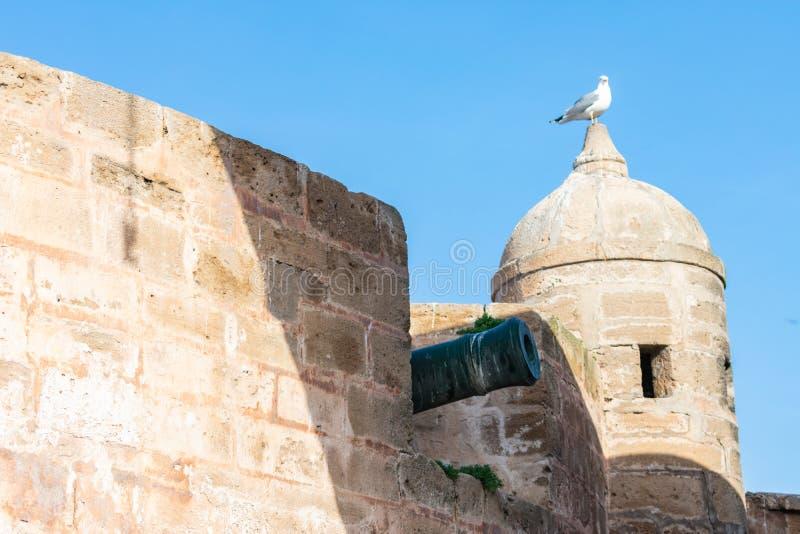 Kanon langs de Muren van Essaouira Marokko stock foto