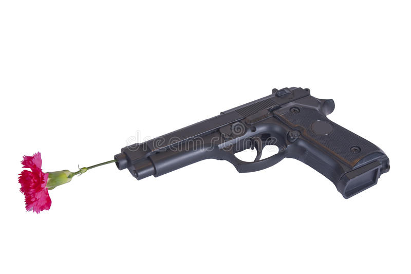 Kanon met een bloem stock fotografie