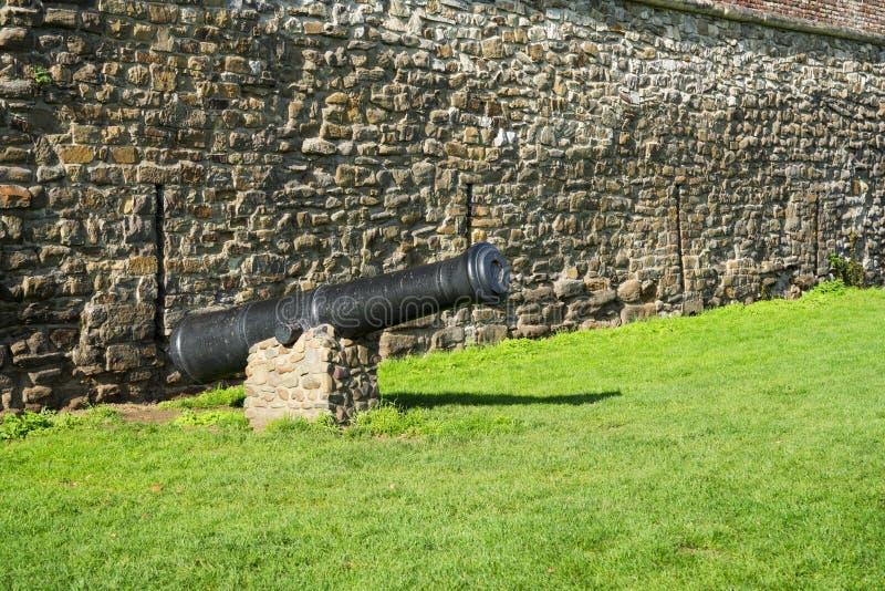 Kanon op groen gebied, tegen bakstenen muur Maastricht, Nederland stock foto's