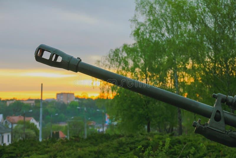 Kanon på parkera royaltyfri foto