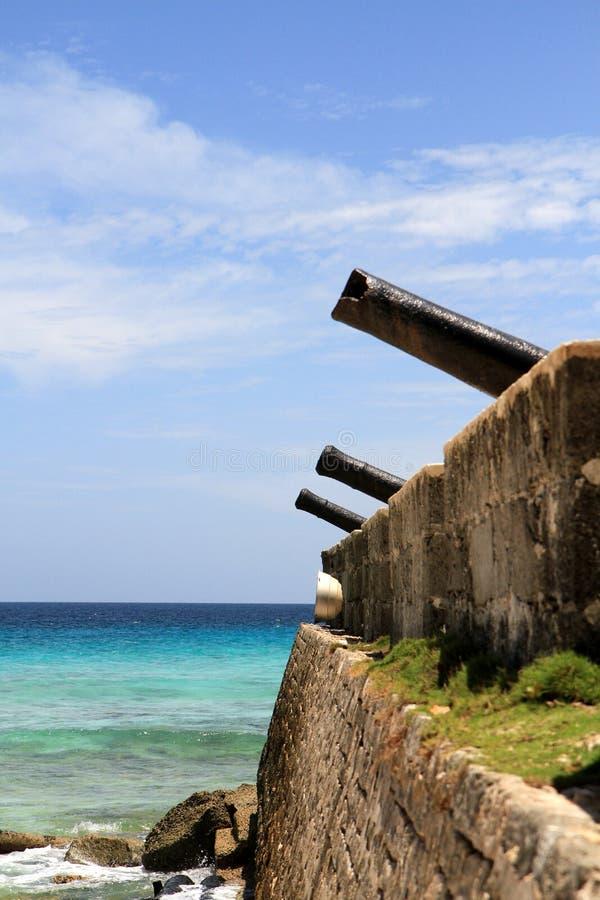 Kanonnen die het overzees onder ogen zien royalty-vrije stock fotografie