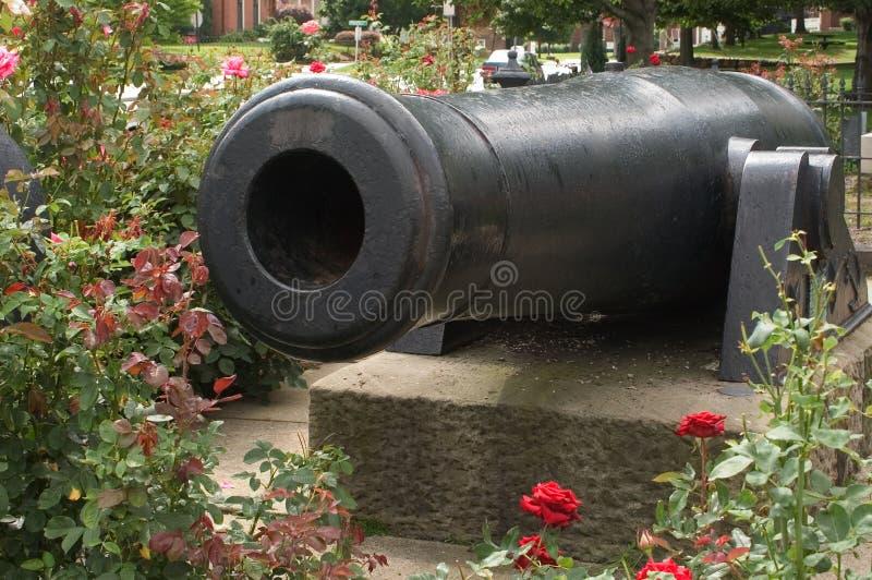 Kanonnen en Rozen