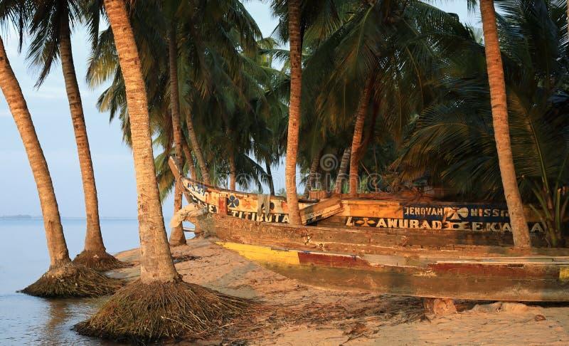 Kanoter och palmträd i Ada Foah, Ghana royaltyfri fotografi