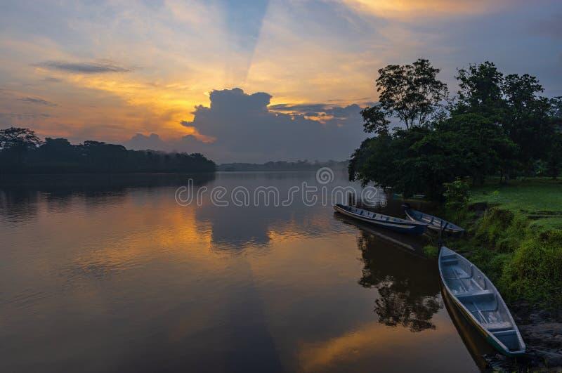 Kanoter på solnedgången i den Amazon River handfatet, Ecuador royaltyfri fotografi