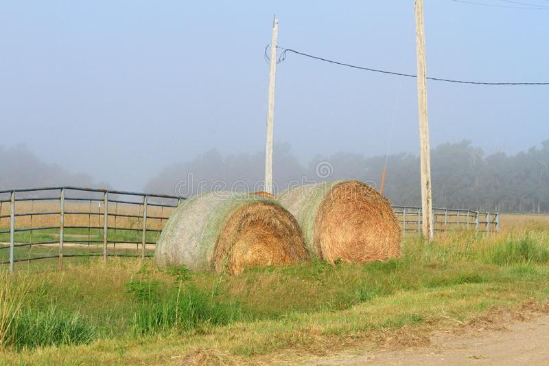 Kansas Alfalfa Bales by a fence with green grass and weeds in the fog. royalty free stock photography
