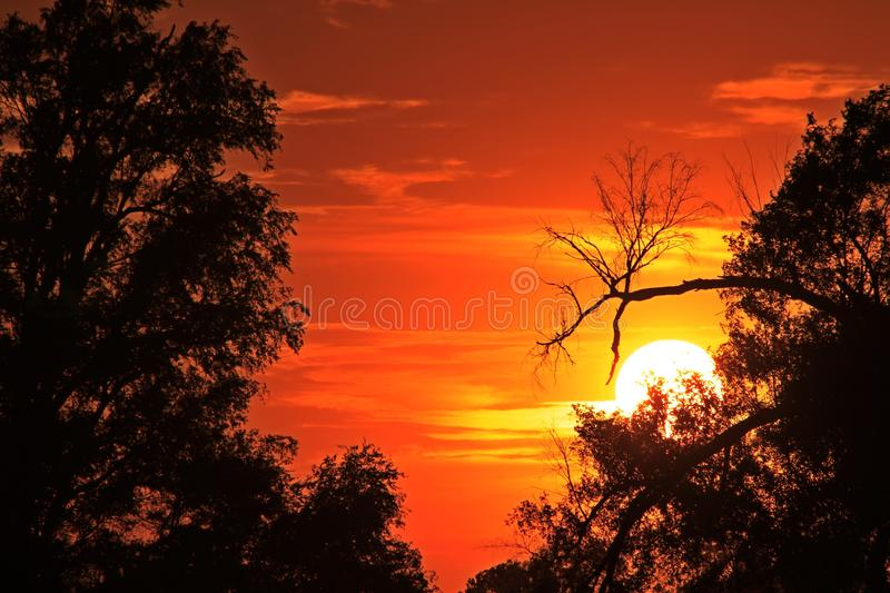 Kansas Blazing Sunset with tree silhouettes and clouds stock photos
