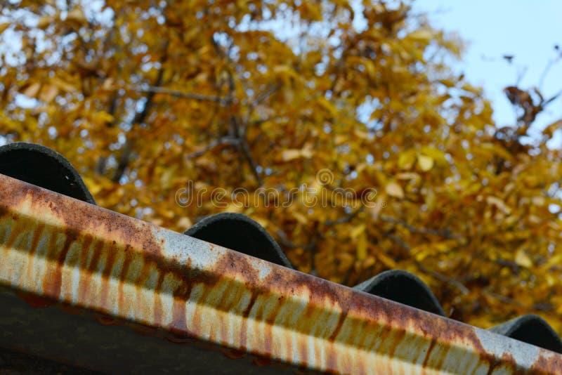 Kant av täckte taket för fiber det cement med den tenn- rostavloppsrännan royaltyfria foton