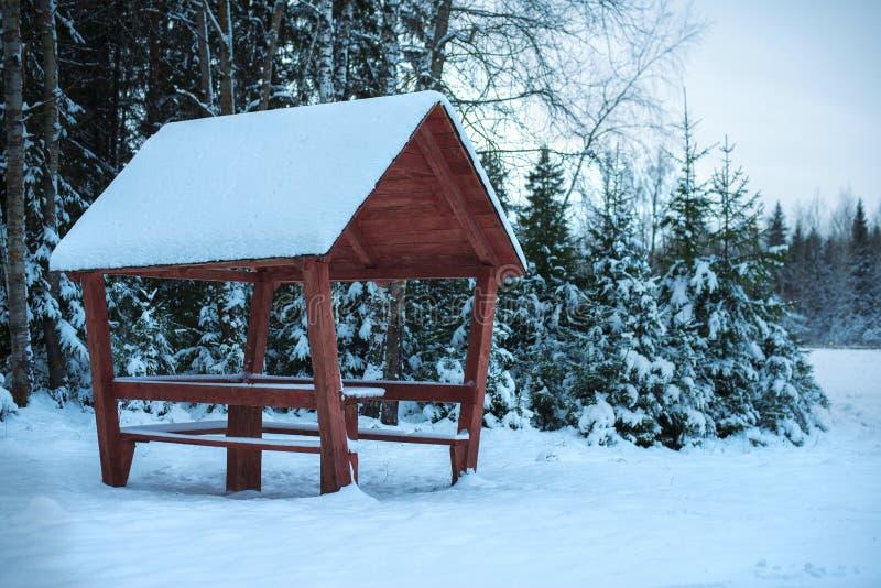 Kant van de weg die in het de winterbos kamperen stock foto