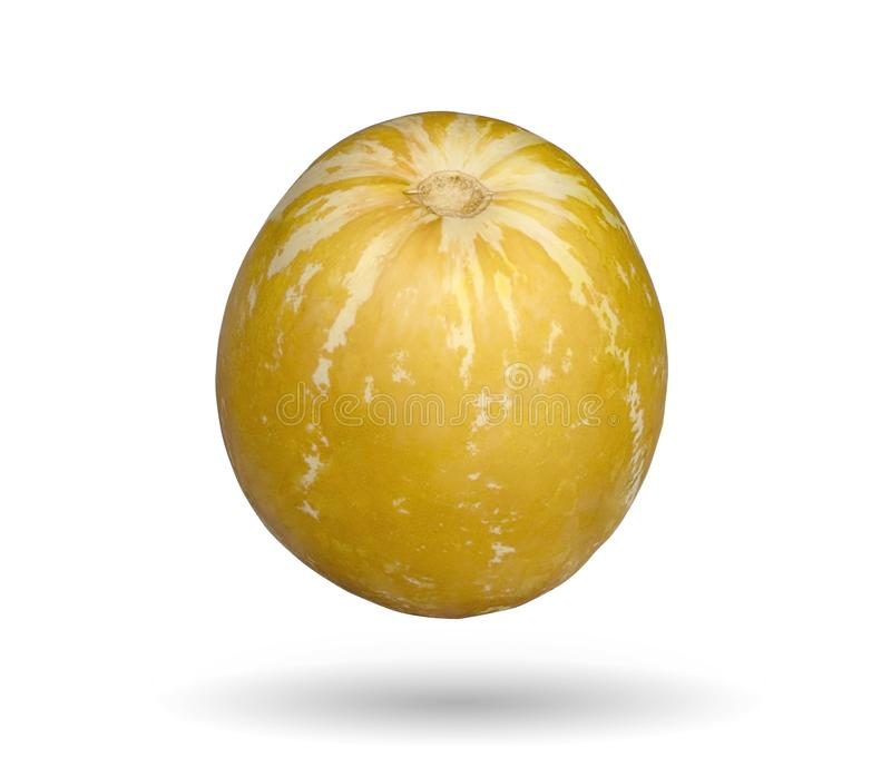 Kantalup, Tajlandzki melon, mały round melon rozmaitość z ora obrazy royalty free
