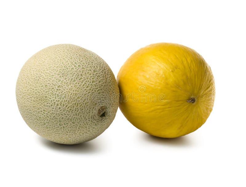 Kantalupe- und Blatthonigmelonen lizenzfreies stockbild