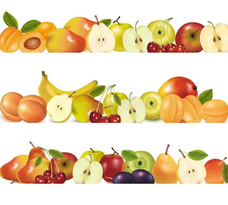 kanter planlägger frukt isolerade white tre vektor illustrationer
