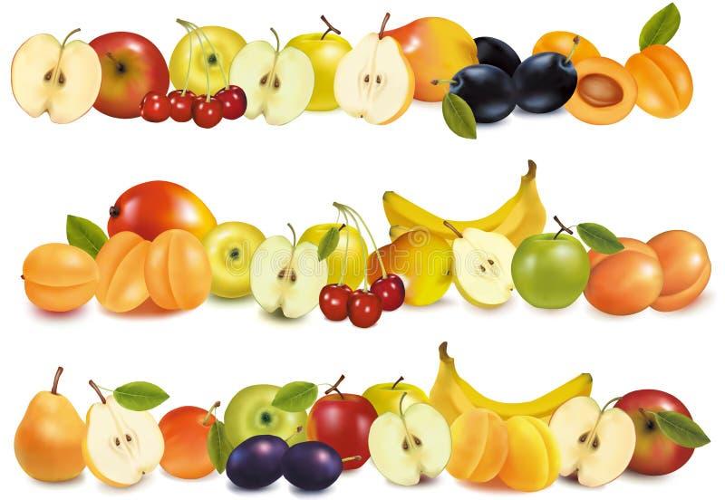 kanter planlägger frukt tre vektor illustrationer