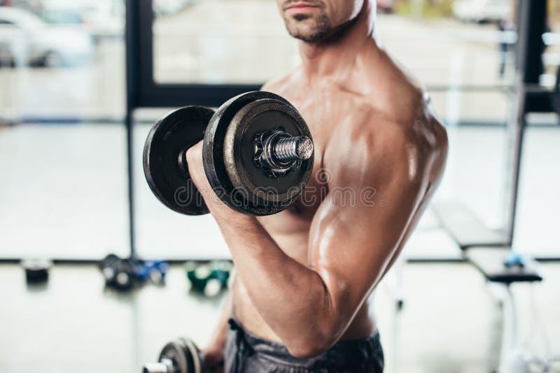 kantjusterad bild av shirtless svettig idrottsmanutbildning med hantlar royaltyfria foton