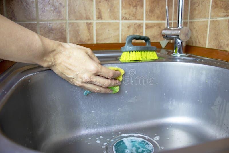 Kantjusterad kvinna` s räcker washes och gör ren en vask med en svamp och en borste royaltyfri foto
