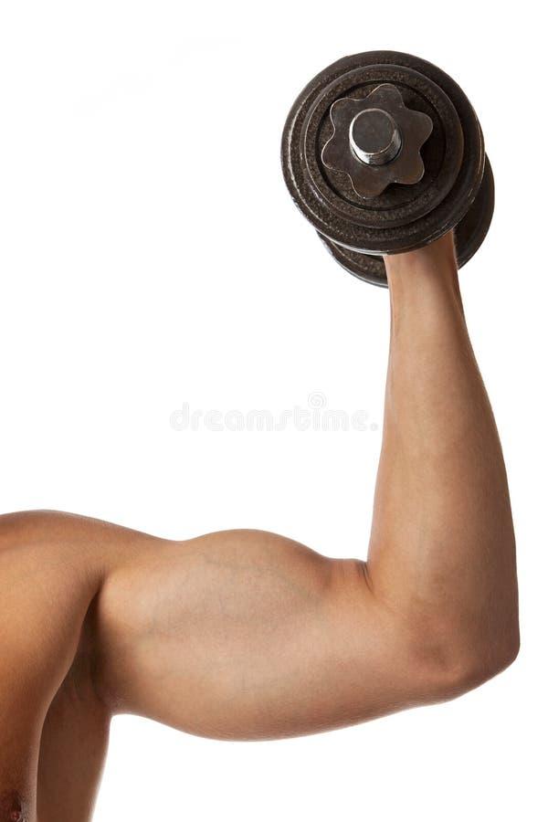 Kantjusterad sikt av en muskulös man som lyfter en hantel fotografering för bildbyråer