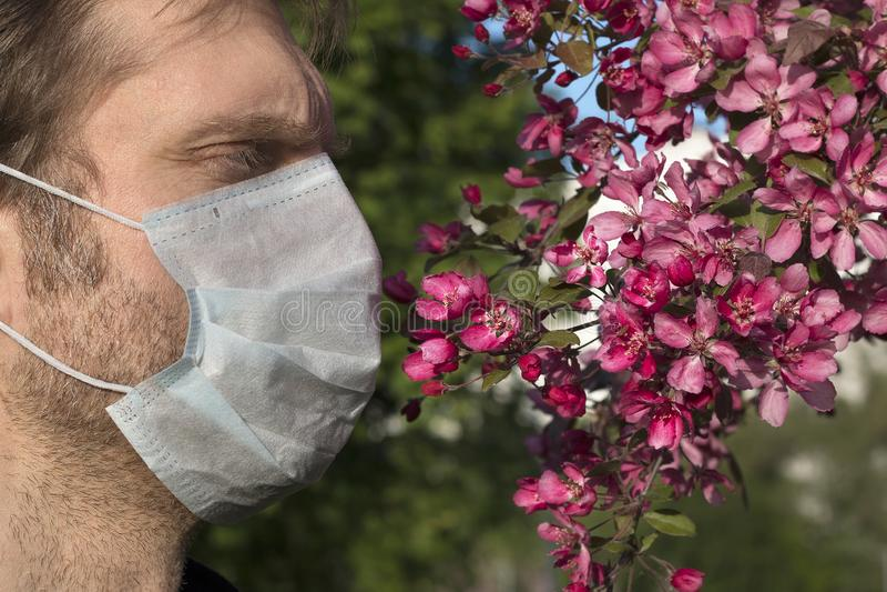Kantjusterad sikt av mannen med den medicinska respiratorn på hans framsida, Apple-träd blommor arkivfoton