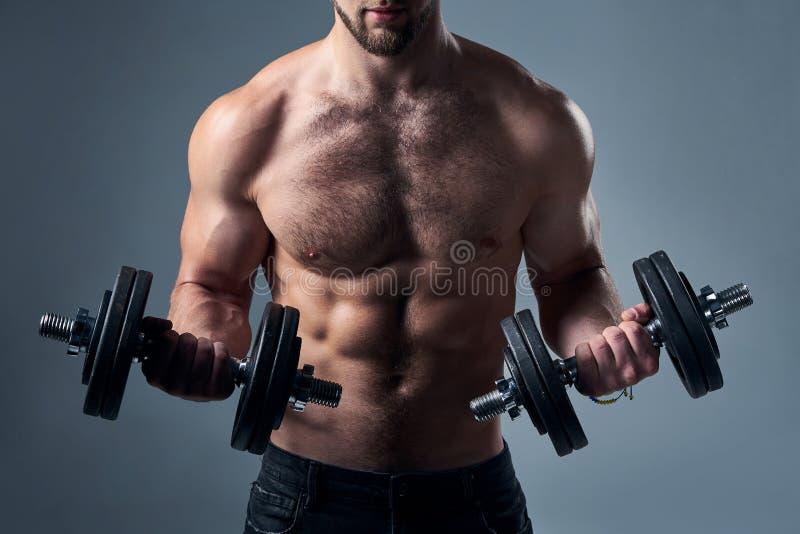 Kantjusterad stående av den starka shirtless sportmannen med isolerade hantlar arkivfoton